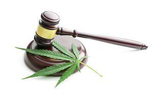 South Carolina criminal defense attorney